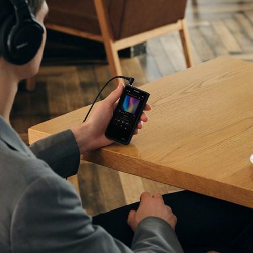 Sony NW-ZX507 Walkman Player